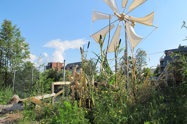 ReMarshing: Waste­lands to Wetlands